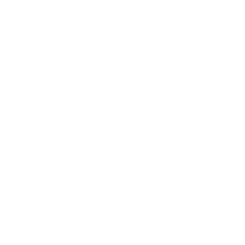Fibre Active